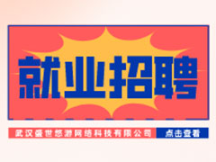 【就业招聘】武汉盛世悠游网络科技有限公司・武汉新华就业招聘信息