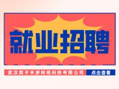 【就业招聘】武汉梨子手游网络科技有限公司・武汉新华就业招聘信息